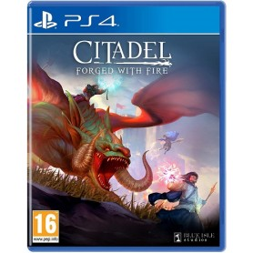 Citadel: Forged With Fire PS4