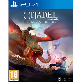 Citadel: Forged With Fire PS4 USATO