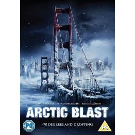 Arctic Blast (solo disco) DVD USATO