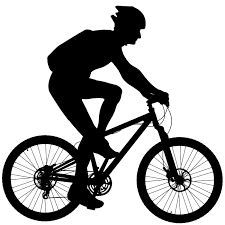 Consegna in bici e in giornata con una piccola spesa,solo clienti di Palermo